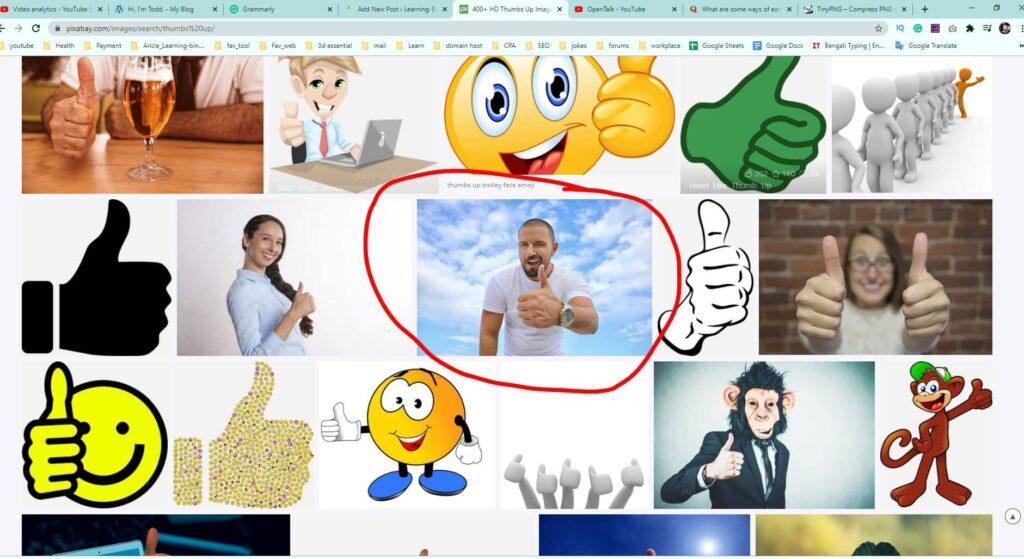fake picture dollartod   Learning-Bin